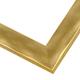 FNA2 Gold Frame