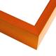 FT17 Tangerine Frame