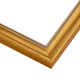 SL17 Gold Frame