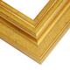 WS5 Gold Frame