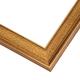 JHS2 Gold Frame