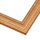 ECS2 Gold Frame