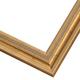 WX513 Gold Frame