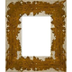 WX541 Silver w/ Gold Frame
