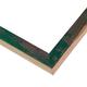 BLE13 Green Frame