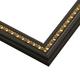 SL6 Black w/ Gold Frame