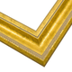 FL9 Gold Frame