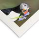 Hahnemuehle Rag Photo Paper