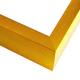 FT14 Gold Spark Frame