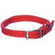 Adjustable Puppy Collar 14 Inch Red