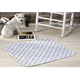 Pooch Pad 48 X 48 (Single)
