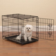 Easy Crate Black Dog Crate XL