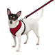 Casual Canine Mesh Dog Harness Extra Small Red