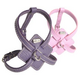 Petego Flat Calfskin Dog Harness MD Purple
