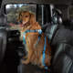 Cruising Companion Dog Car Harness XL Pink