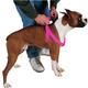Guardian Gear 2 Step Dog Harness 25 to 40in Pink