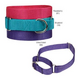Guardian Gear Martingale Dog Collar LG Violet