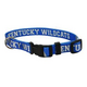NCAA Kentucky Wildcats Dog Collar Large