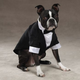 East Side Collection Groom Dog Tuxedo XL