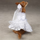 East Side Collection Dog Wedding Dress XL