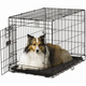 Midwest ACE Single Door Dog Crate 48 Inch