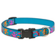 LupinePet Wet Paint Adjustable Dog Collar 15-25in
