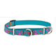 LupinePet Wet Paint Semi-Choke Dog Collar 14-20in