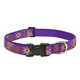 LupinePet Sunny Days Adjustable Dog Collar 16-28in