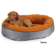 Bowsers Orbit Dog Bed Large Sienna