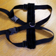 Basic Lookout Pet Harness Large