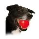 Nite Ize Meteorlight LED Dog Ball Toy Blue