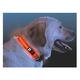 Nite Ize Nite Dawg LED Dog Collar Large