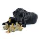 Quado Interactive Dog Chew Small Peanut