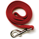 Nylon Dog Leash 6ft x 1in Red