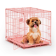 Midwest Color iCrate Folding Dog Crate Pink