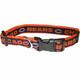 Chicago Bears Orange Trim Dog Collar Large
