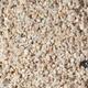 Carib Sea Aragonite Reef Sand Substrate 40lb