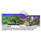 Blue Ribbon Reef Aquarium Background 24in