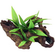 Blue Ribbon Mopani Wood with Silk Plants Large