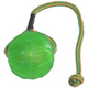 StarMark Swing and Fling Chew Ball Dog Toy