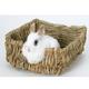 Peters Rabbit Grass Bed