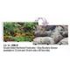 Blue Ribbon Rainforest Aquarium Background