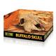 Hagen Exo Terra Terrarium Decor Buffalo Skull