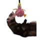 Marshall Ferret Bungee Toy