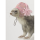 Marshall Ferret Knit Cap Pink