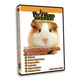 Caring For Your Small Pet DVD Guinea Pig