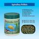 OSI Spirulina Fish Nibblers