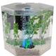 Tetra Hex Bubbling LED Aquarium Kit