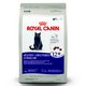 Royal Canin Spayed Neutered 12 Dry Cat Food