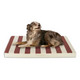 Buddy Beds Outdoor Dog Bed